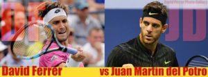 David Ferrer vs Juan Martin DelPotro